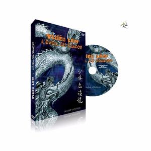 DVD Eveil du dragon - Imagin Arts